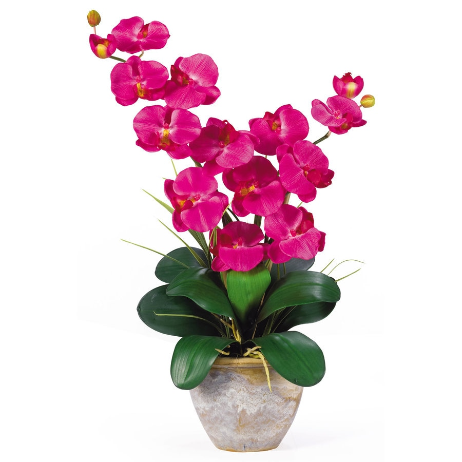 Nearly Natural 25-in Beauty Silk Arrangement