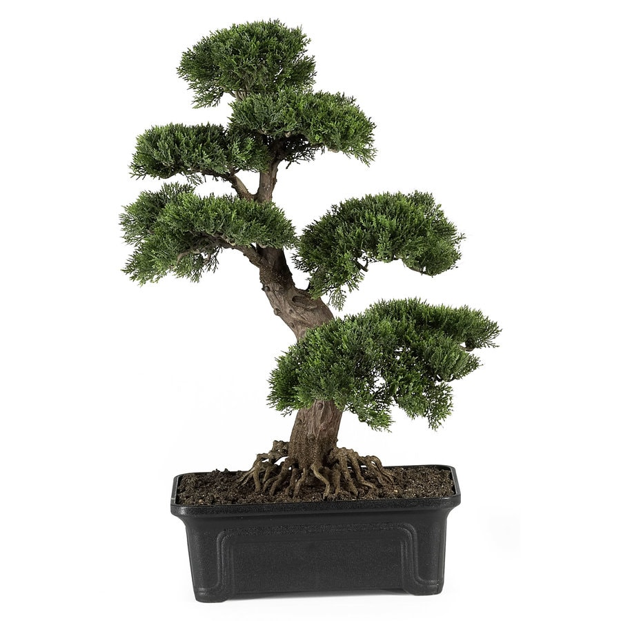 Nearly Natural 24-in Green Silk Tree