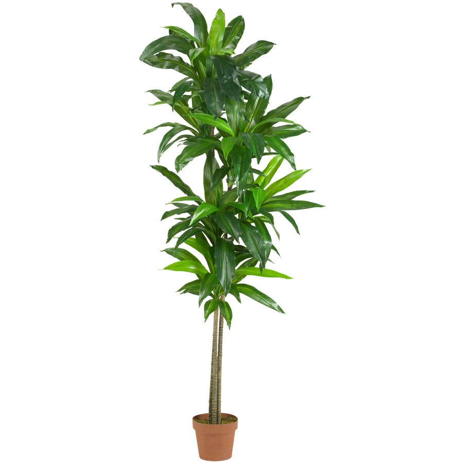 Nearly Natural 72-in Green Silk Plant