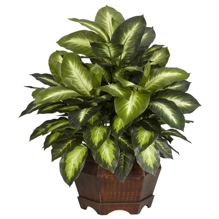 Nearly Natural 24-in Green Silk Plant