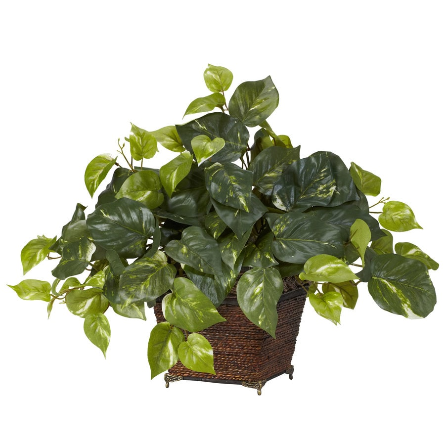 Nearly Natural 17-in Green Silk Plant