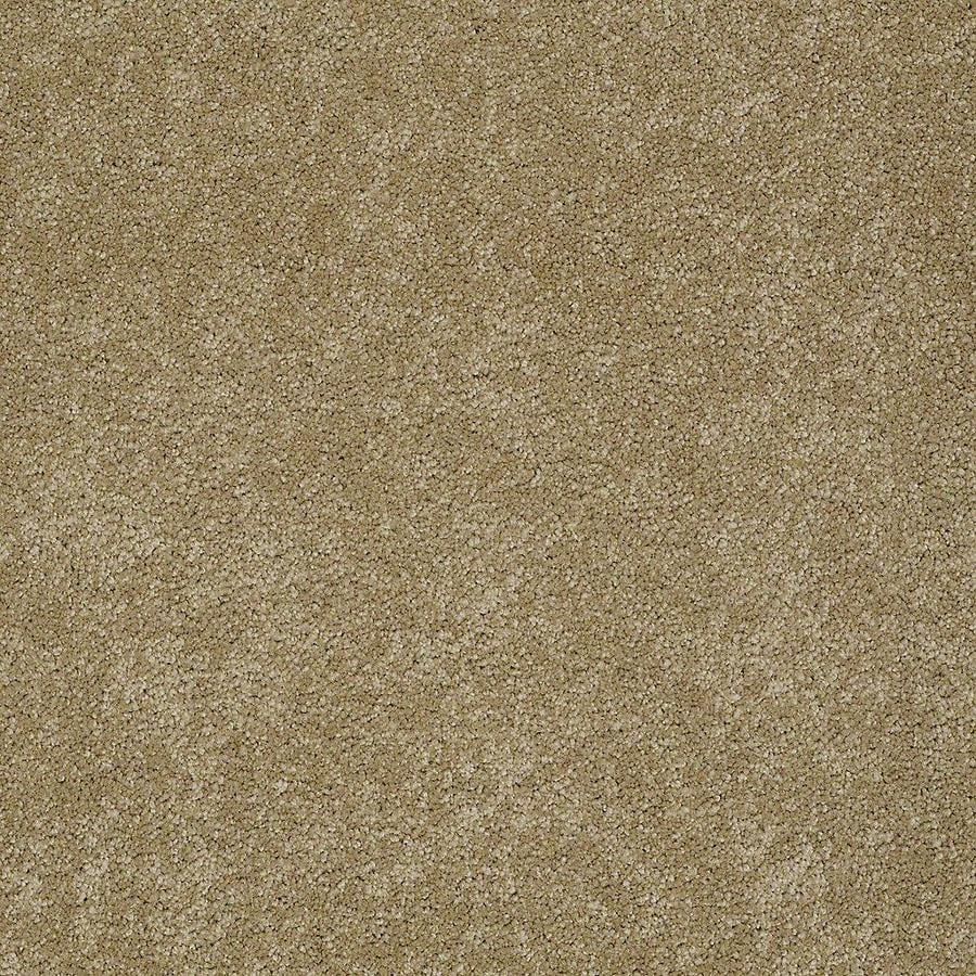 STAINMASTER Baxter II PetProtect Molly Plus Carpet Sample