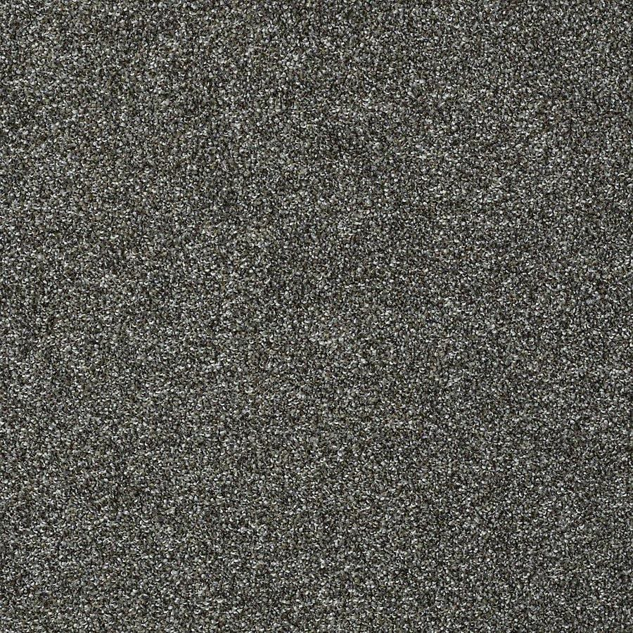 STAINMASTER Baxter II PetProtect Roll Over Plus Carpet Sample