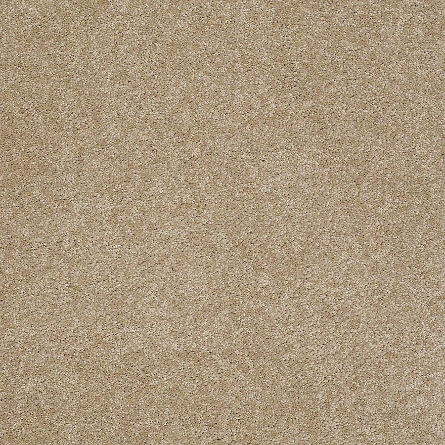 STAINMASTER Baxter II PetProtect Boxer Plus Carpet Sample