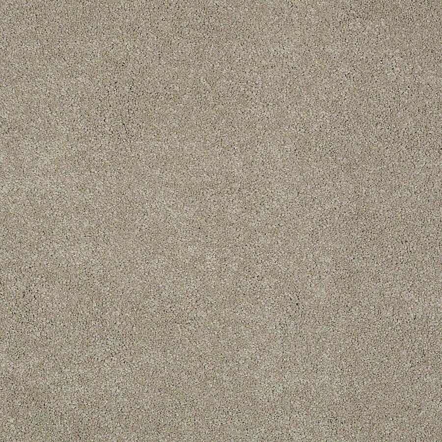 STAINMASTER Baxter II PetProtect Oliver Plus Carpet Sample