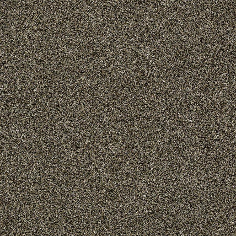 STAINMASTER Baxter II PetProtect Brody Plus Carpet Sample