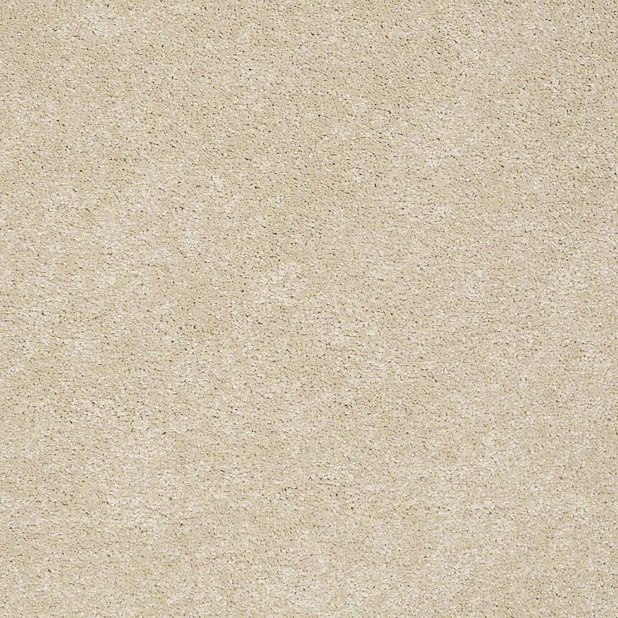 STAINMASTER Baxter III PetProtect Rudy Plus Carpet Sample