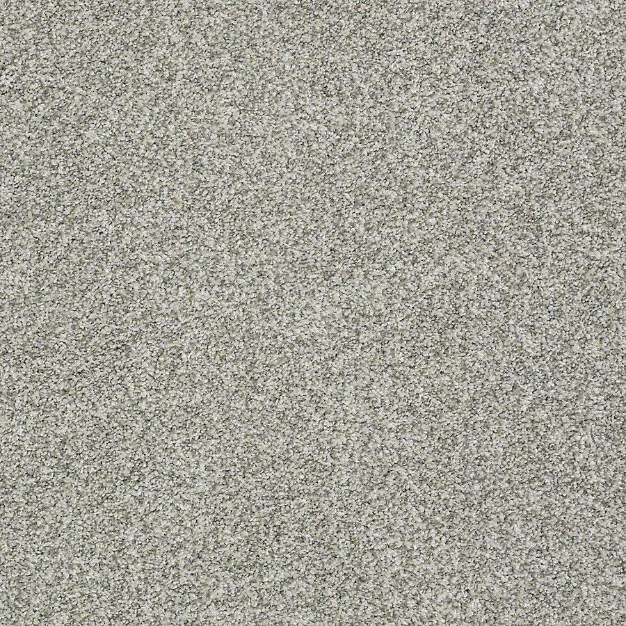 STAINMASTER Baxter III PetProtect Trixie Plus Carpet Sample