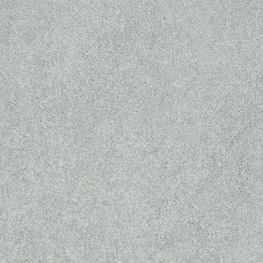 STAINMASTER Baxter III PetProtect Rex Plus Carpet Sample