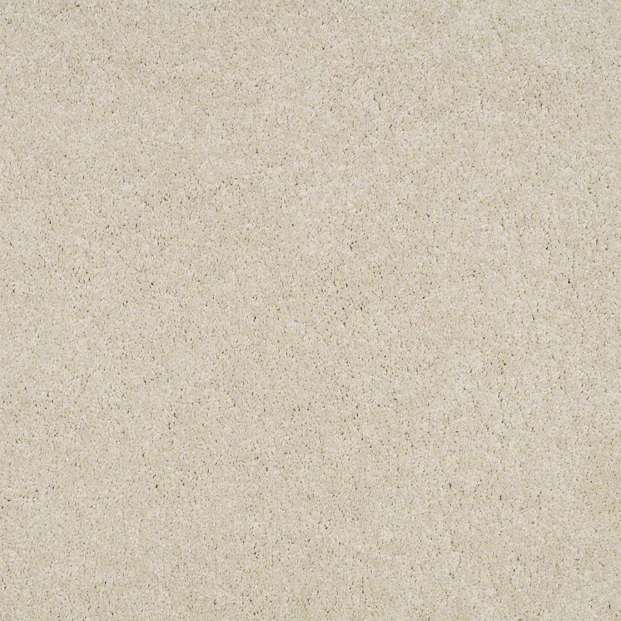 STAINMASTER Baxter IV PetProtect Pug Plus Carpet Sample