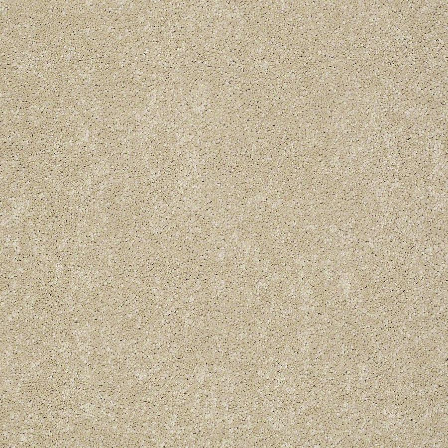 STAINMASTER Baxter IV PetProtect Charlie Plus Carpet Sample