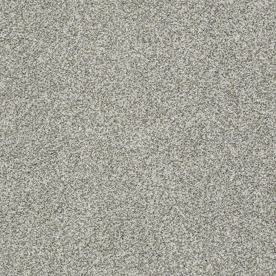 STAINMASTER Baxter IV PetProtect Trixie Plus Carpet Sample
