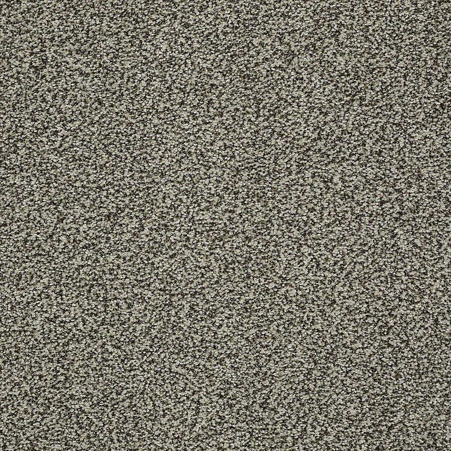 STAINMASTER Baxter IV PetProtect Tank Plus Carpet Sample