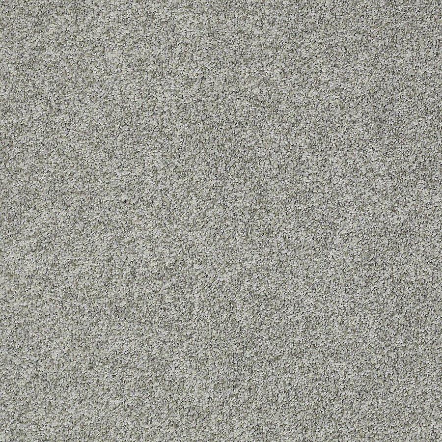 STAINMASTER Baxter I PetProtect Roscoe Plus Carpet Sample
