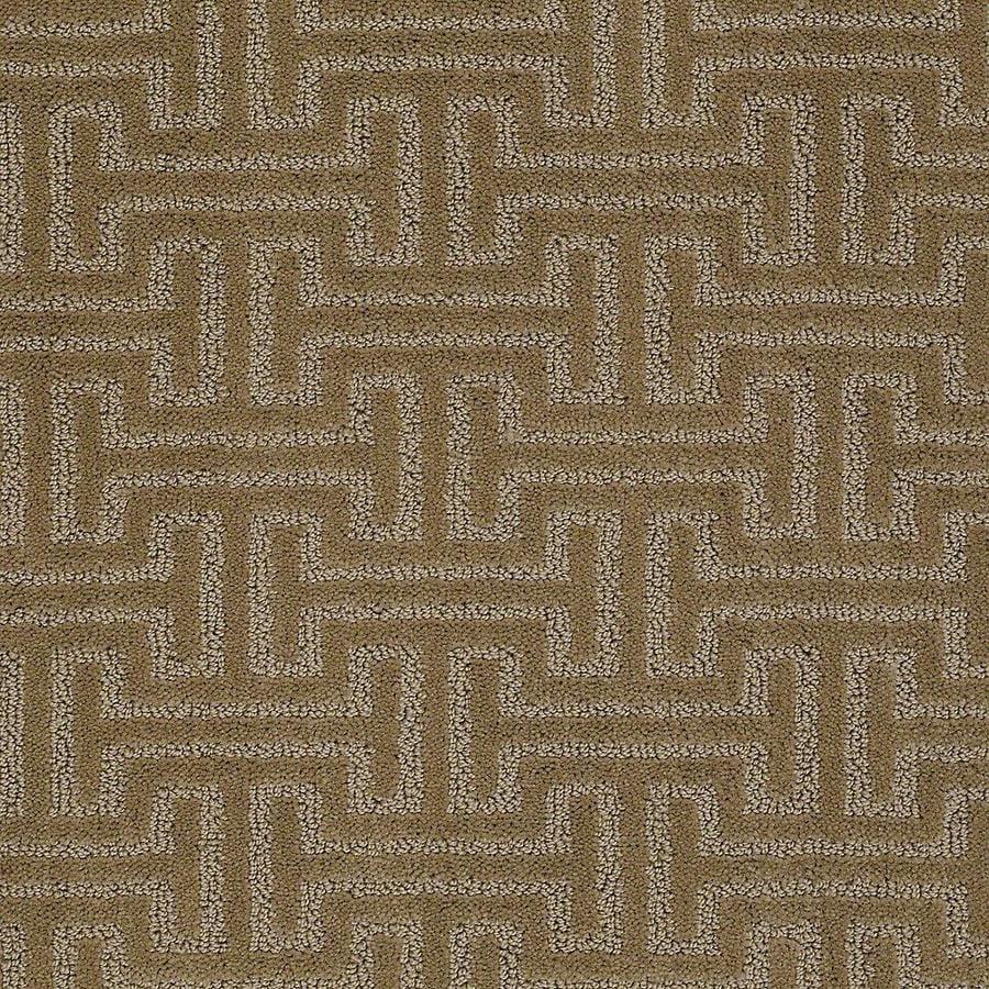 STAINMASTER Belle PetProtect Rufus Cut and Loop Carpet Sample