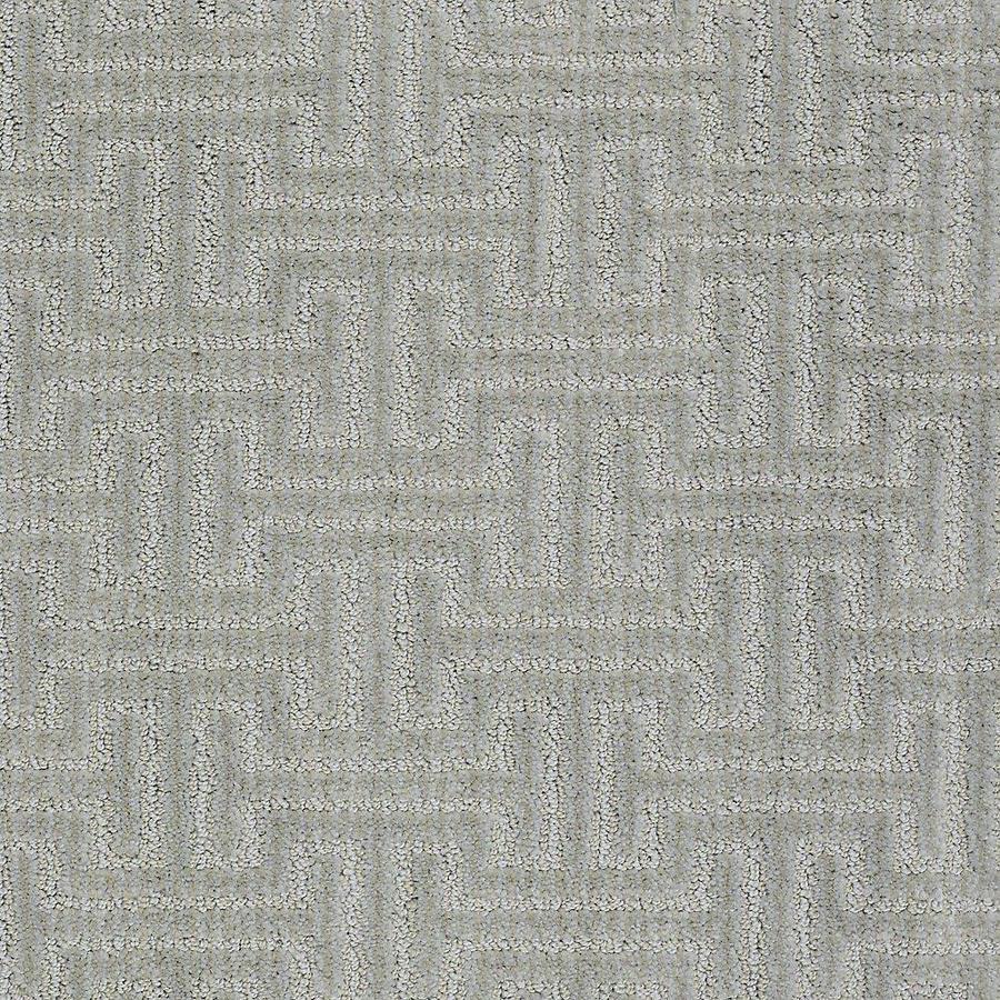 STAINMASTER Belle PetProtect Louie Cut and Loop Carpet Sample