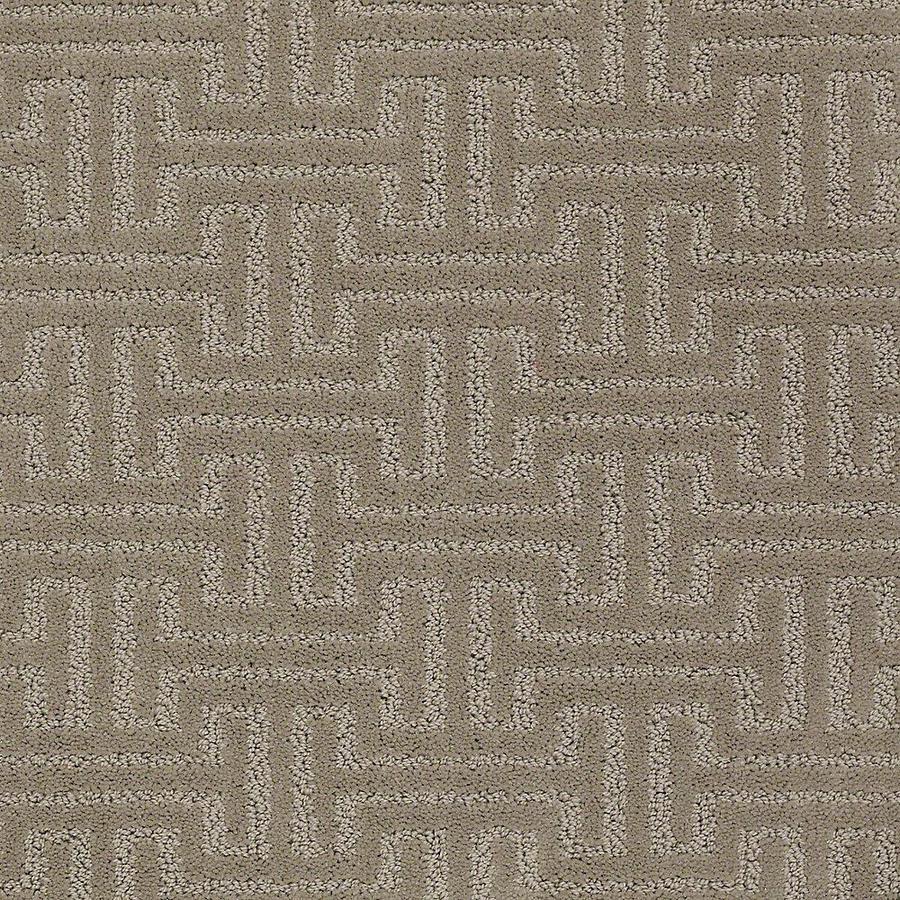 STAINMASTER Belle PetProtect Hank Cut and Loop Carpet Sample