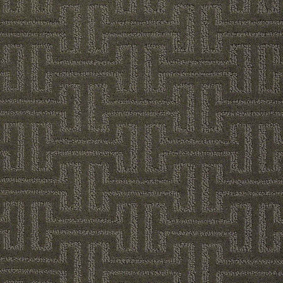 STAINMASTER Belle PetProtect Paw Print Cut and Loop Carpet Sample