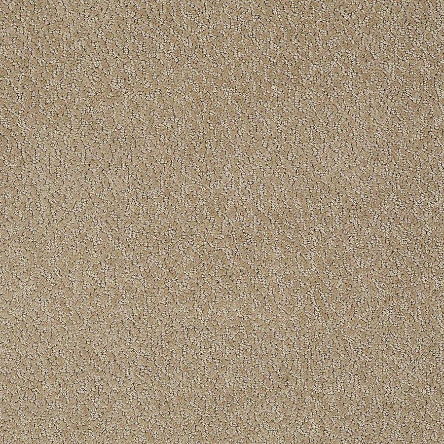STAINMASTER Bianca PetProtect Bulldog Cut and Loop Carpet Sample