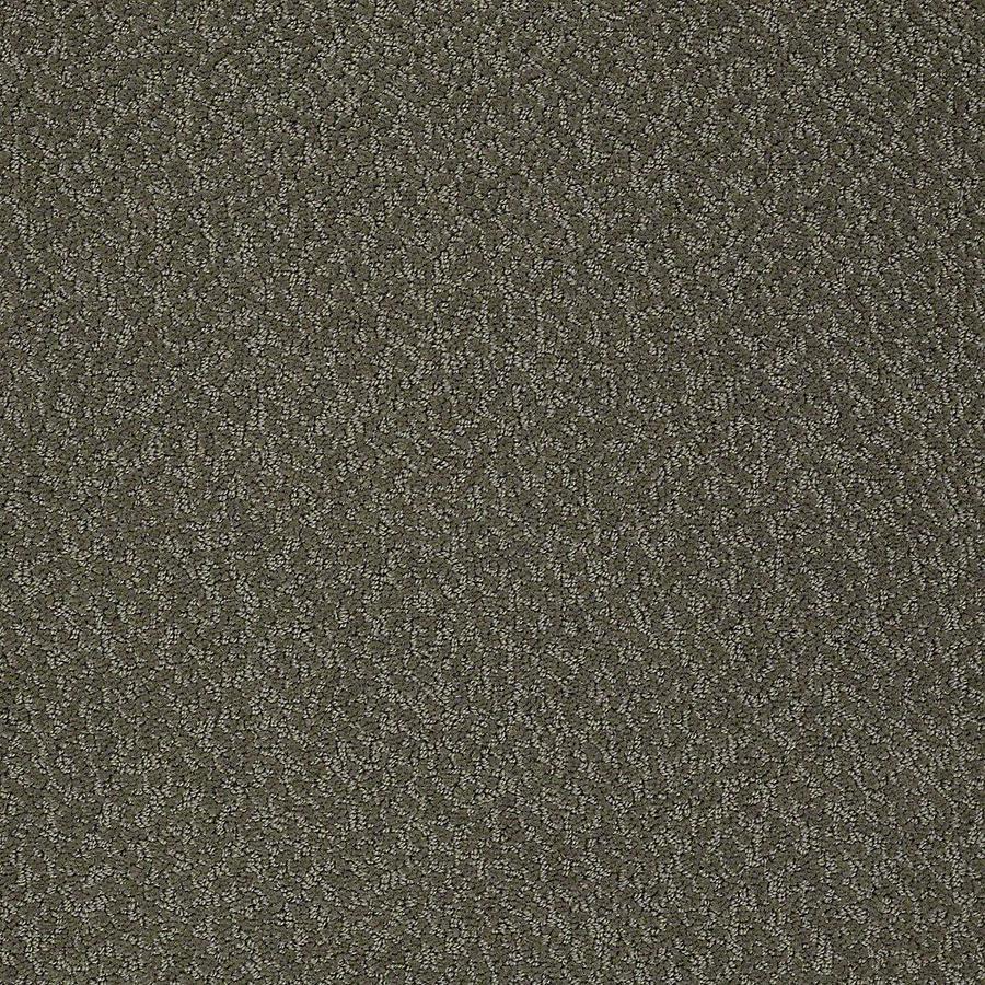 STAINMASTER Bianca PetProtect Paw Print Cut and Loop Carpet Sample