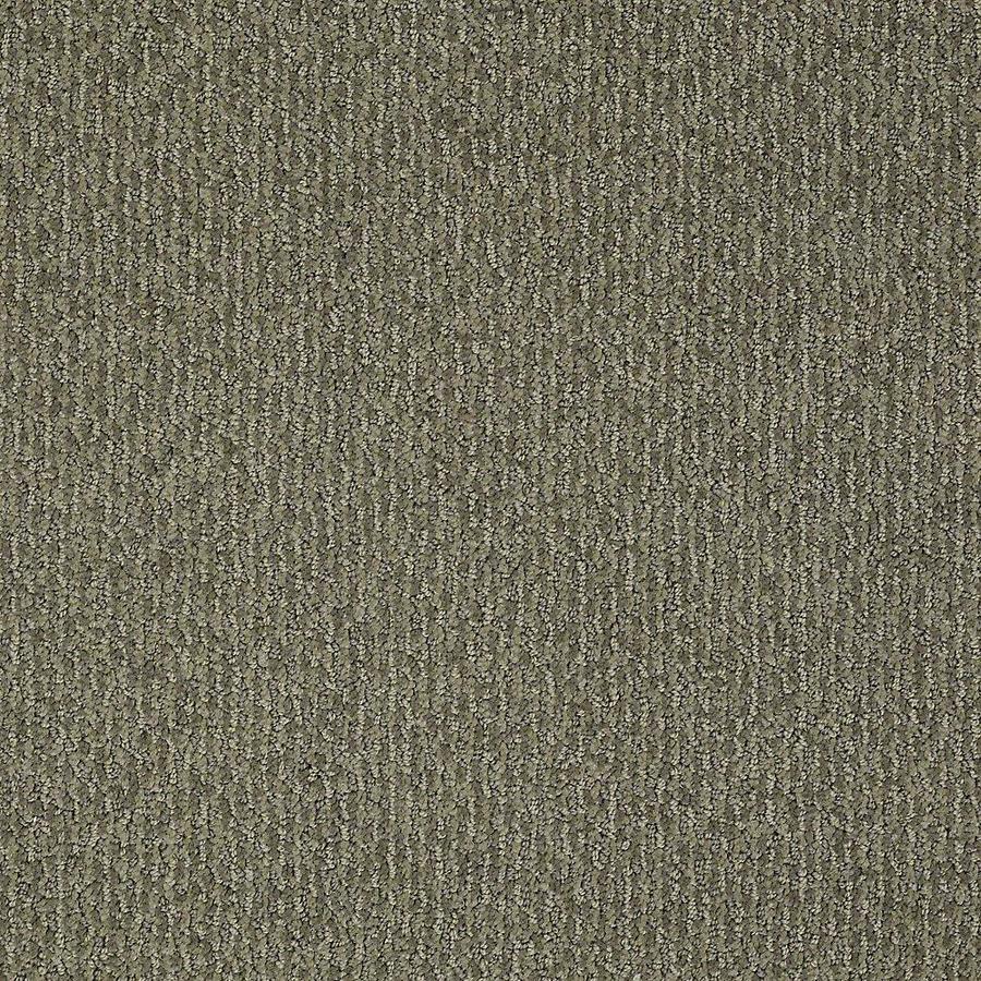 STAINMASTER Bianca PetProtect Husky Cut and Loop Carpet Sample
