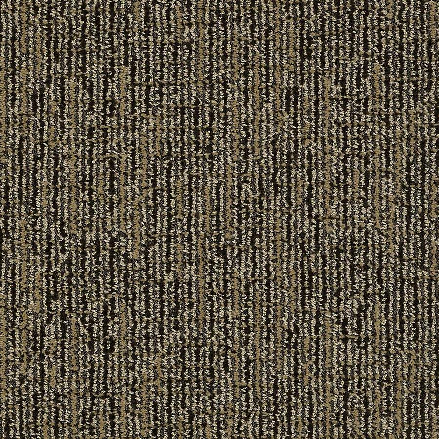 STAINMASTER Bitzy PetProtect Wagging Tail Cut and Loop Carpet Sample