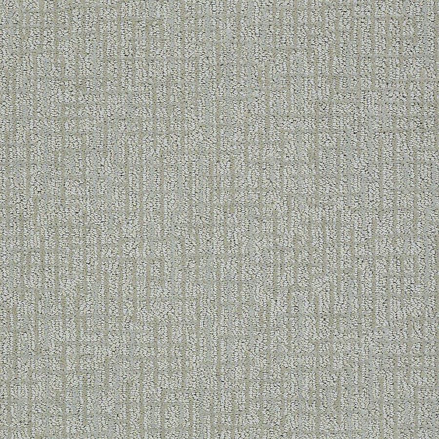 STAINMASTER Bitzy PetProtect Louie Cut and Loop Carpet Sample