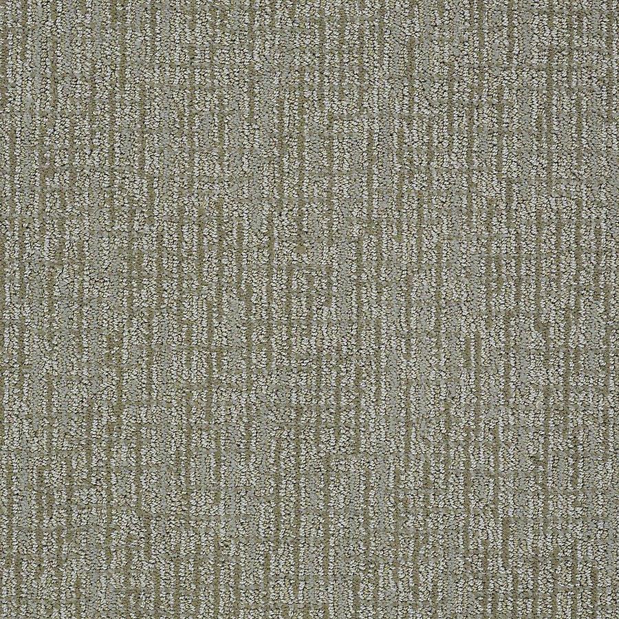 STAINMASTER Bitzy PetProtect Rover Cut and Loop Carpet Sample