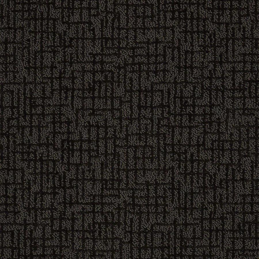 STAINMASTER Bitzy PetProtect Riley Cut and Loop Carpet Sample