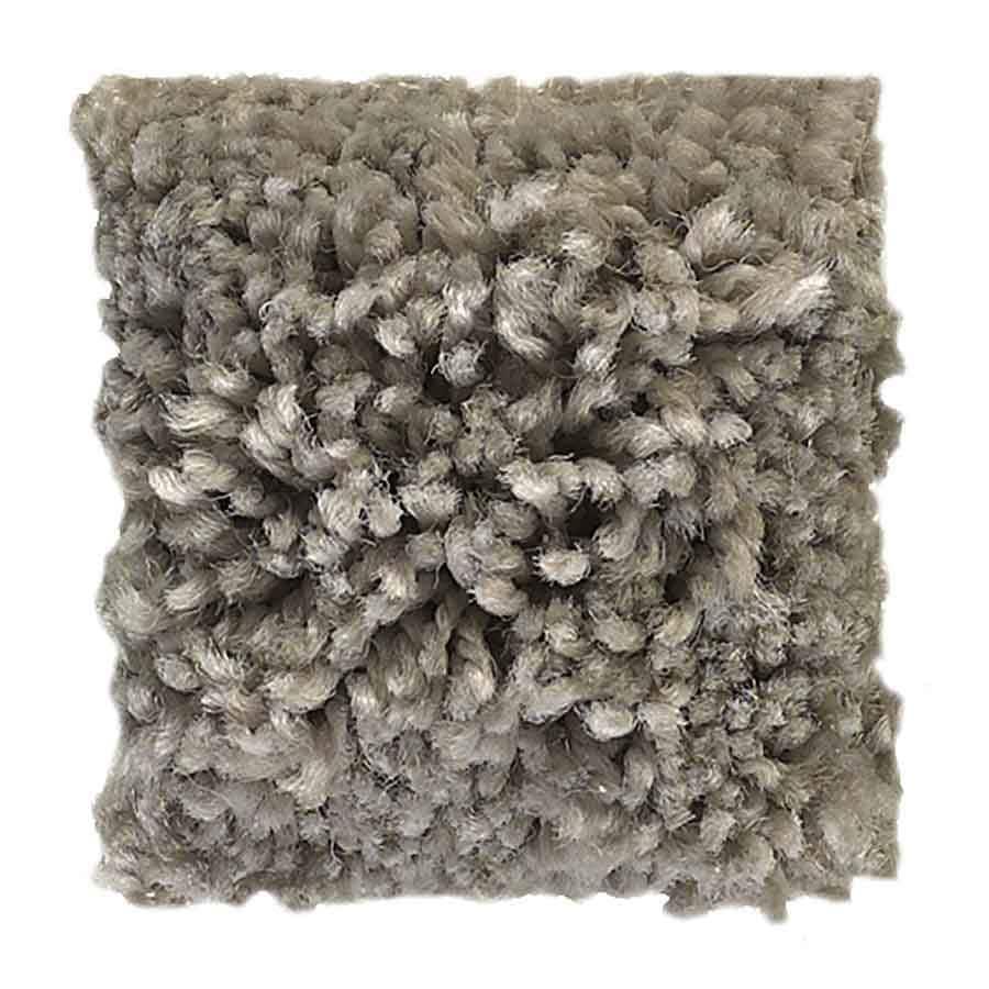 STAINMASTER Baxter II PetProtect Trixie Plus Carpet Sample