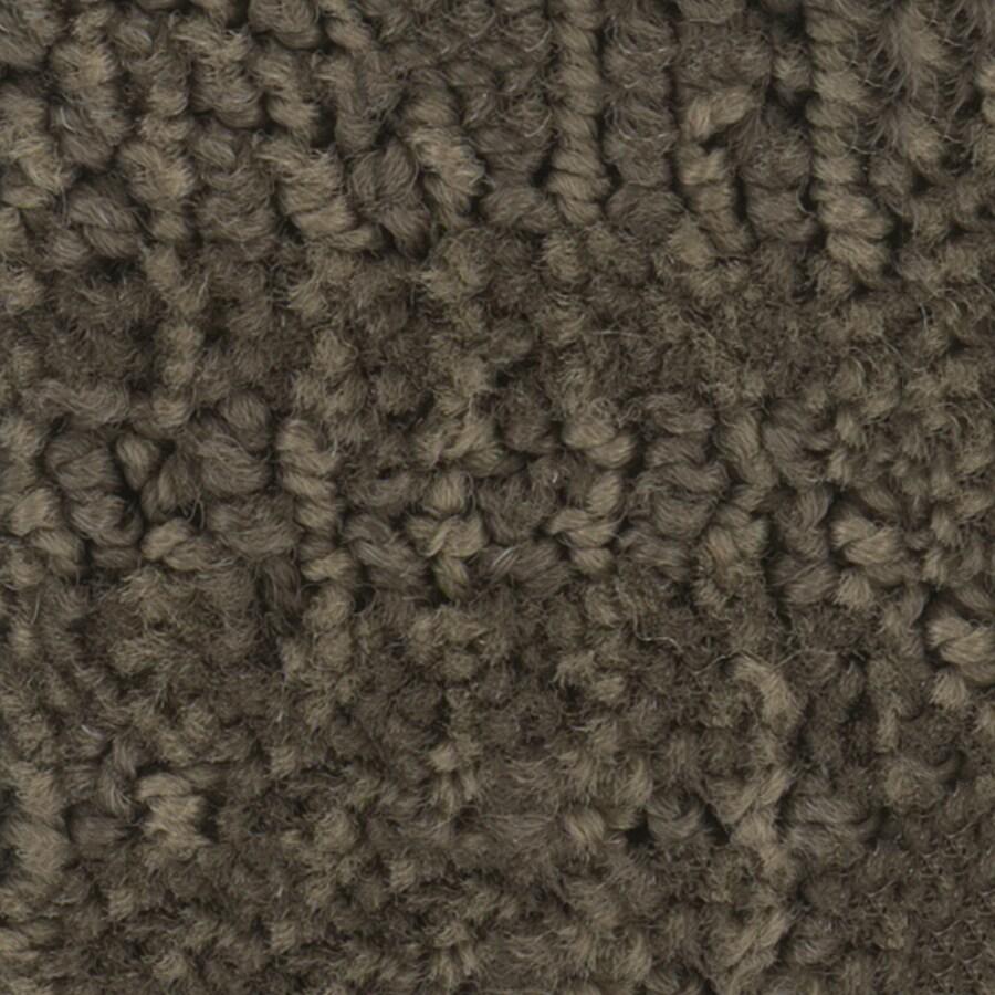 STAINMASTER Belle PetProtect Husky Cut and Loop Carpet Sample