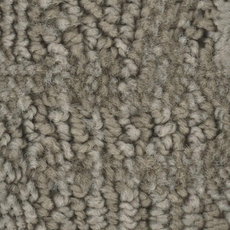STAINMASTER Bianca PetProtect Milo Cut and Loop Carpet Sample