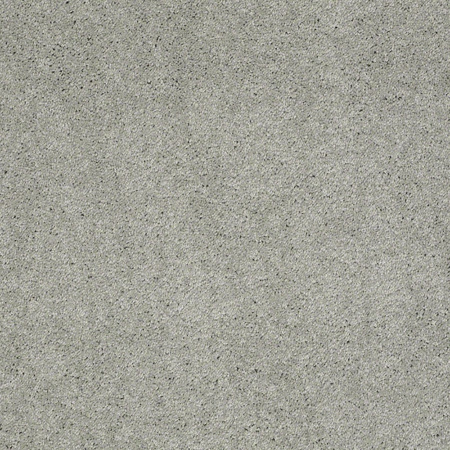 STAINMASTER Supreme Delight Active Family Mystical Plus Carpet Sample