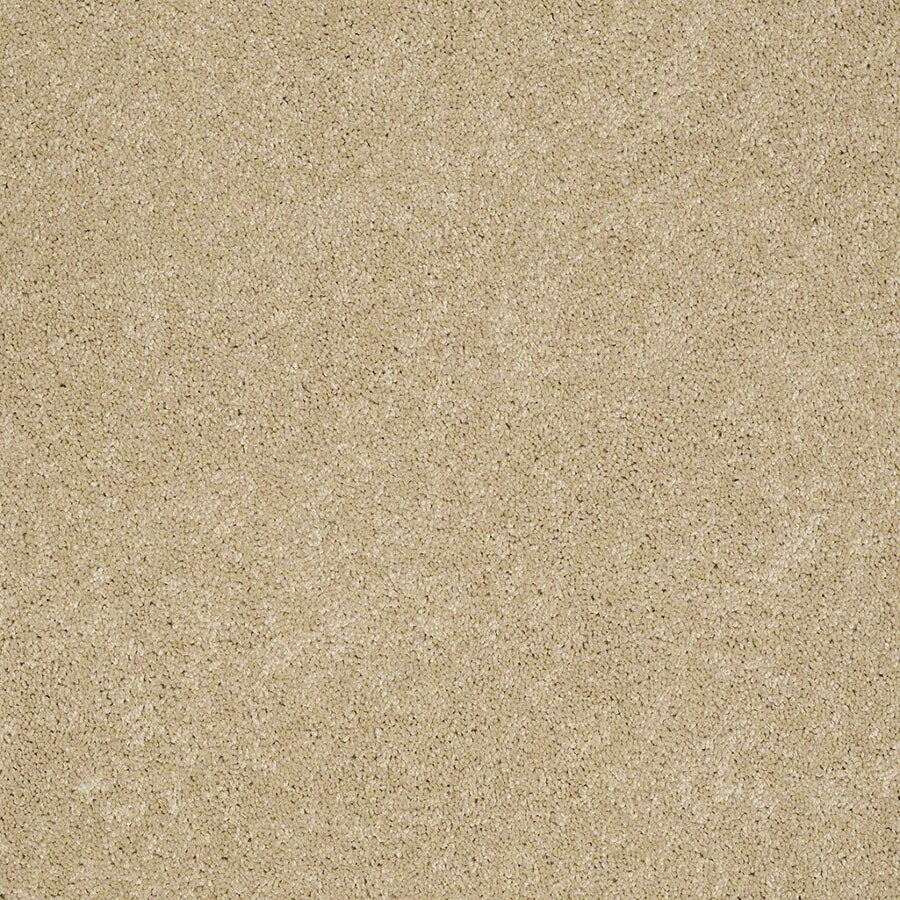 STAINMASTER Supreme Delight Active Family Twinkle Plus Carpet Sample