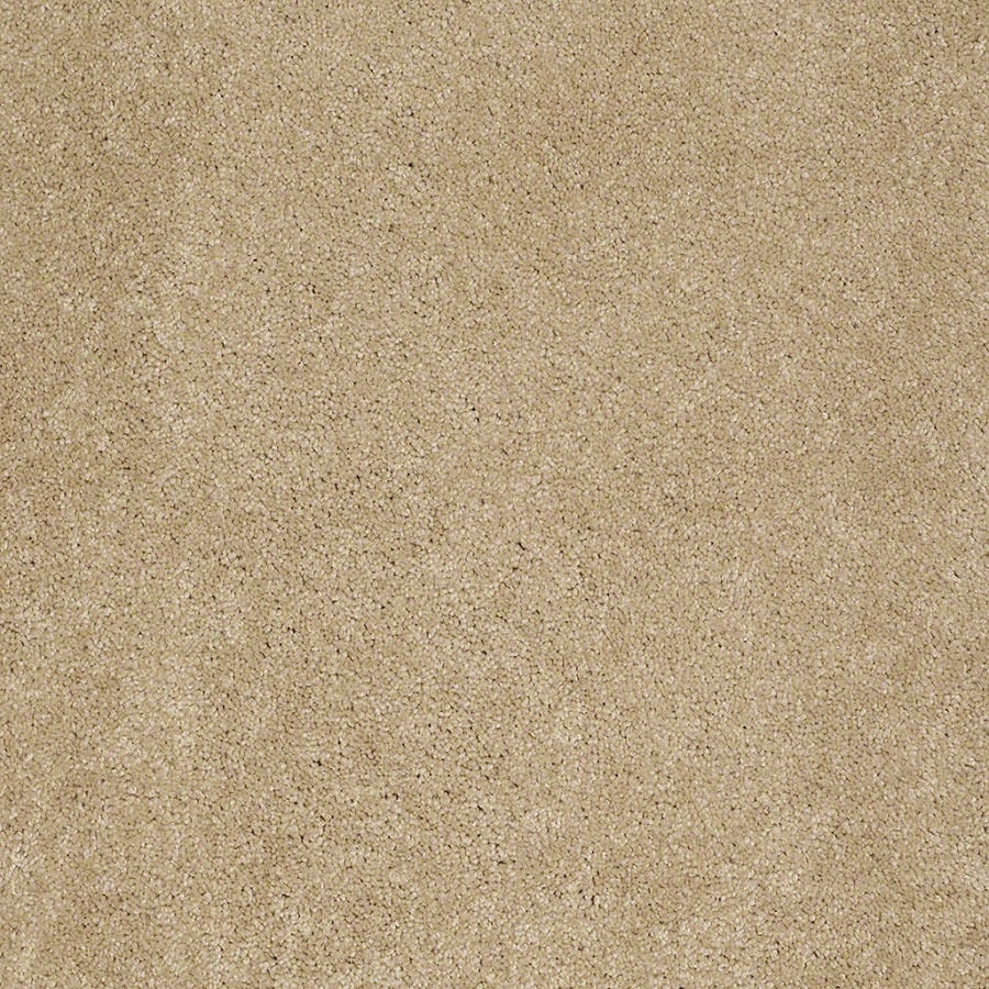 STAINMASTER Supreme Delight Active Family Sunspot Plus Carpet Sample