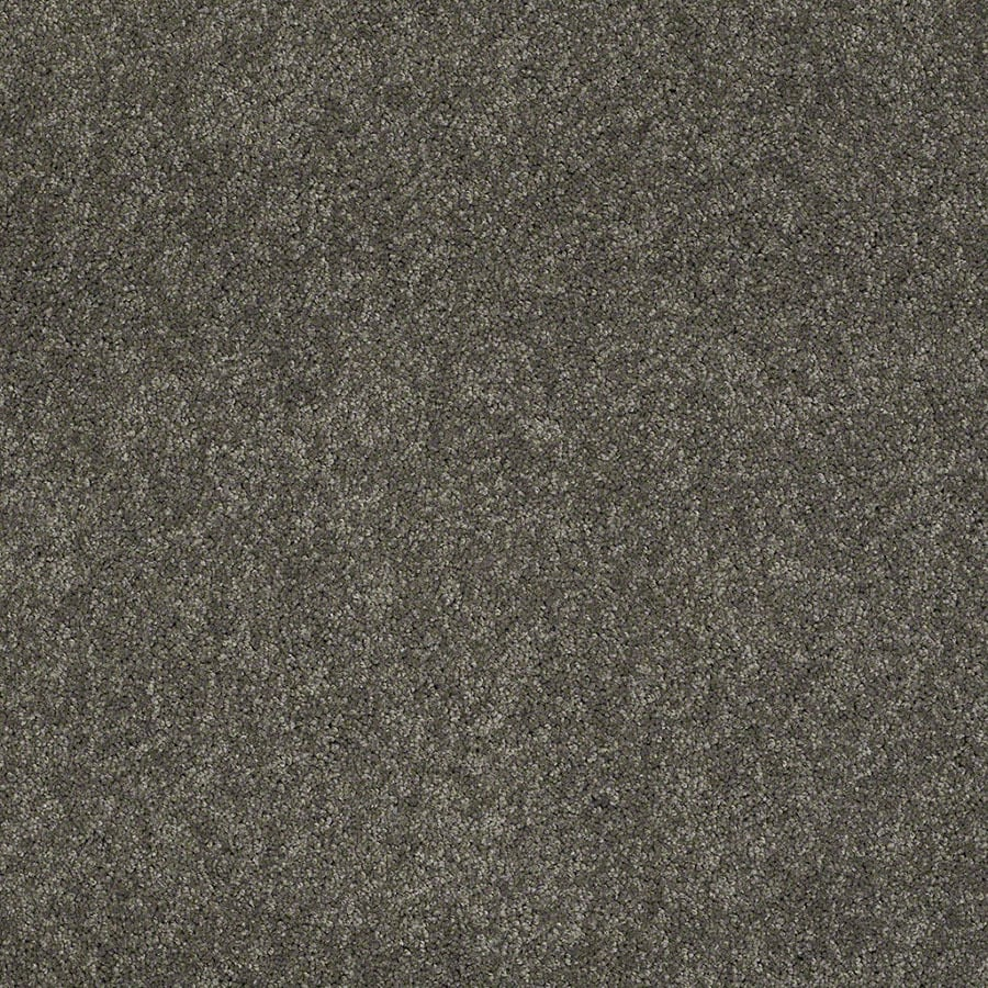 STAINMASTER Supreme Delight Active Family Cityscape Plus Carpet Sample
