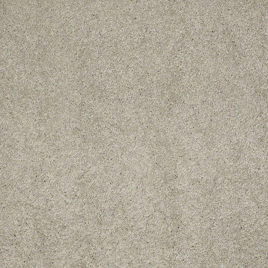 STAINMASTER Supreme Delight Active Family Limestone Plus Carpet Sample