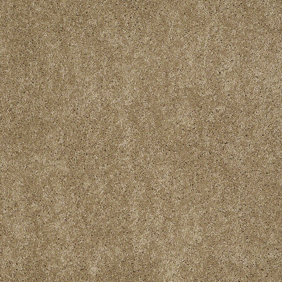 STAINMASTER Supreme Delight Active Family Peanut Butter Plus Carpet Sample
