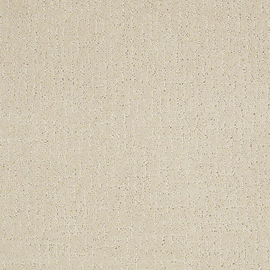 STAINMASTER Undeniable Active Family Macadamia Cut and Loop Carpet Sample