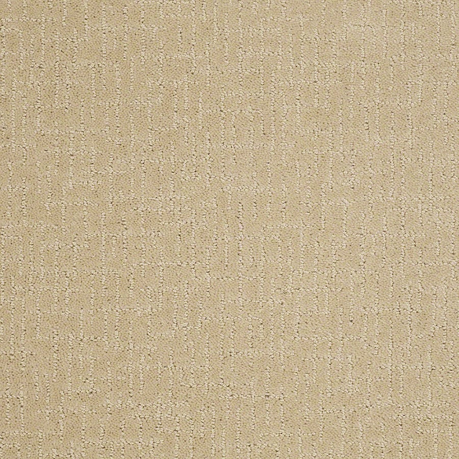 STAINMASTER Undeniable Active Family Chamomile Cut and Loop Carpet Sample