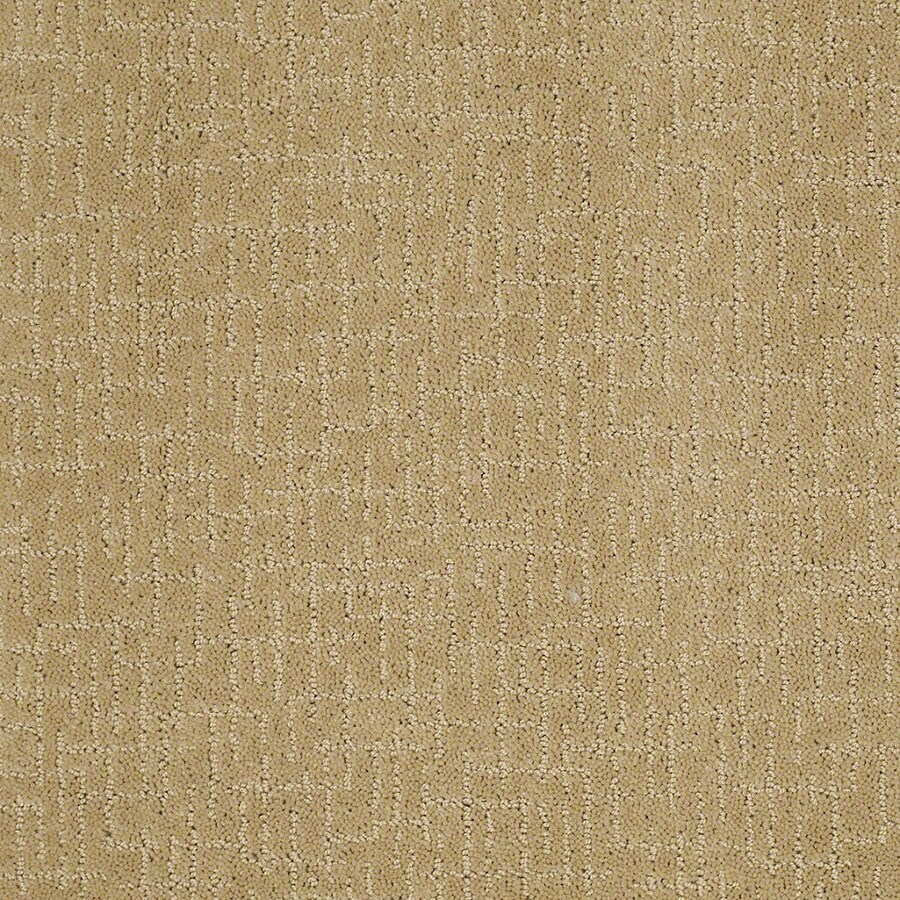 STAINMASTER Undeniable Active Family Summer Melon Cut and Loop Carpet Sample