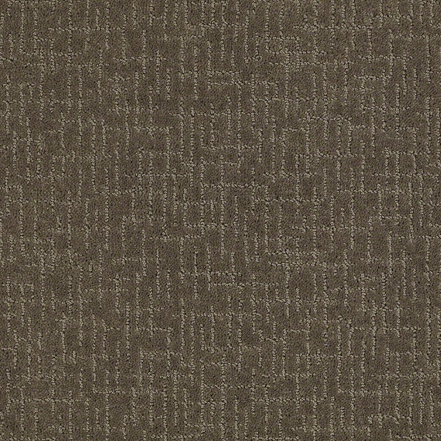 STAINMASTER Undeniable Active Family Oregon Trail Cut and Loop Carpet Sample