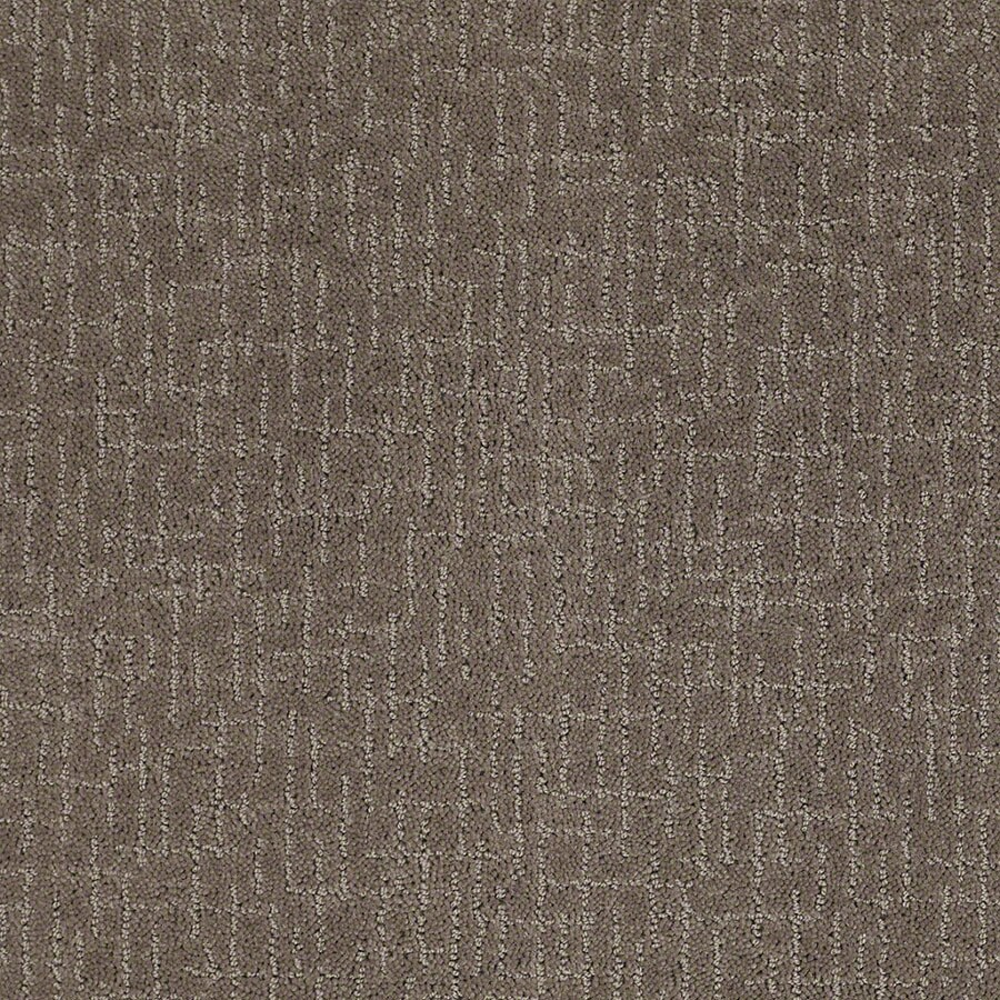 STAINMASTER Undeniable Active Family Glacial Rock Cut and Loop Carpet Sample