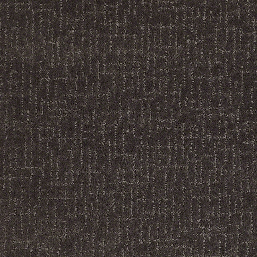 STAINMASTER Undeniable Active Family Falcon Cut and Loop Carpet Sample