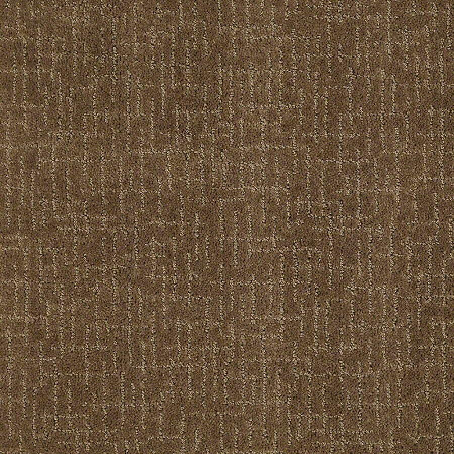 STAINMASTER Undeniable Active Family Toasted Coconut Cut and Loop Carpet Sample