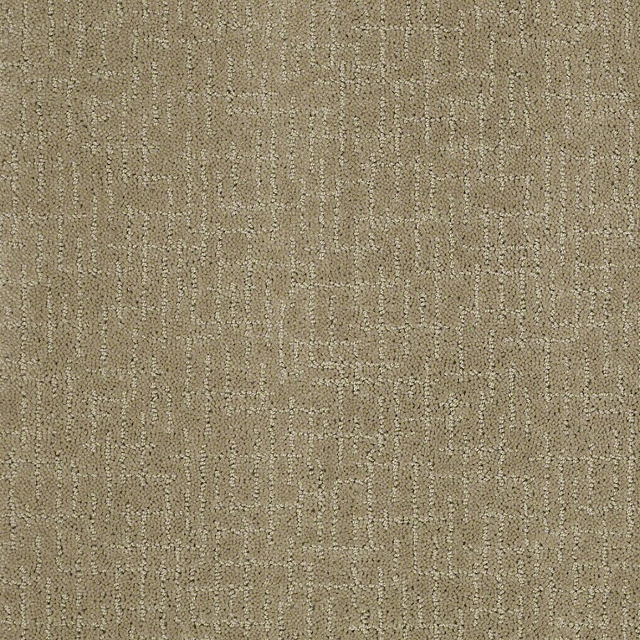 STAINMASTER Undeniable Active Family Fennel Cut and Loop Carpet Sample