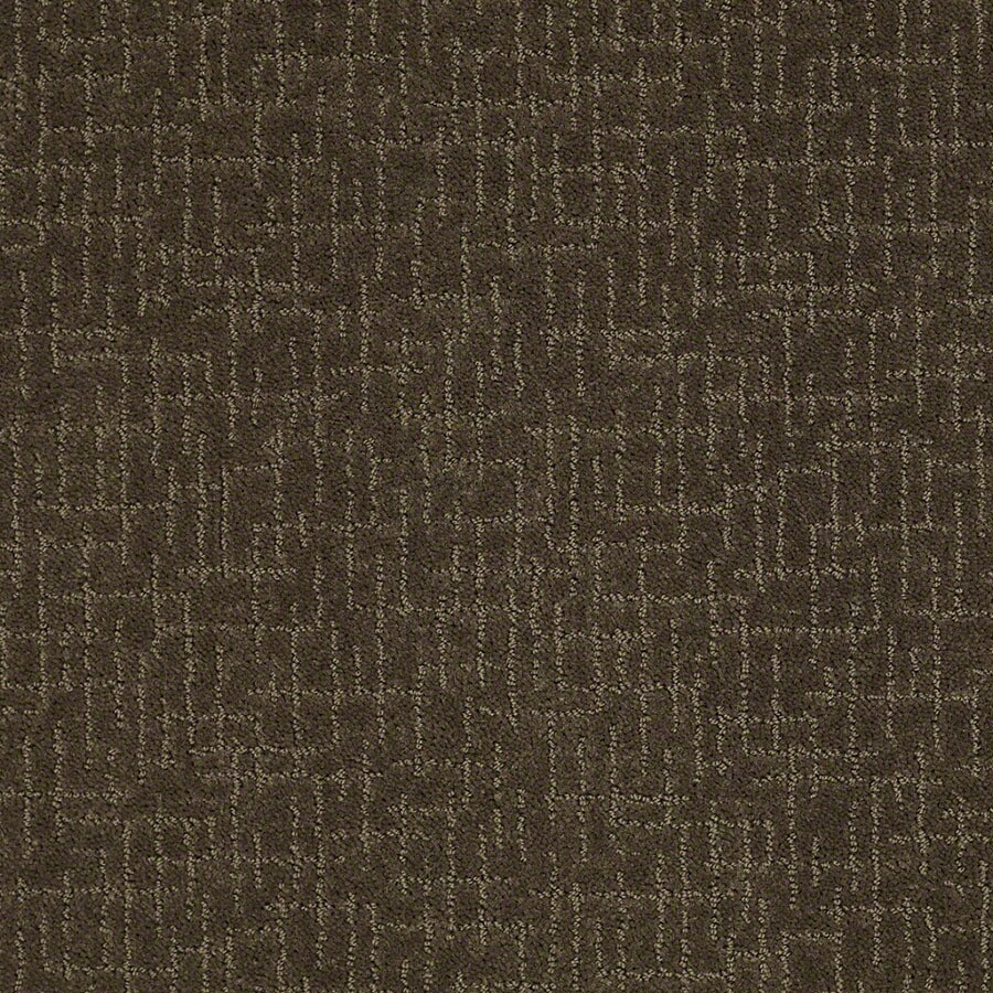 STAINMASTER Undeniable Active Family Shitake Cut and Loop Carpet Sample