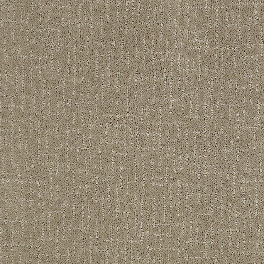 STAINMASTER Undeniable Active Family Hazy Cut and Loop Carpet Sample
