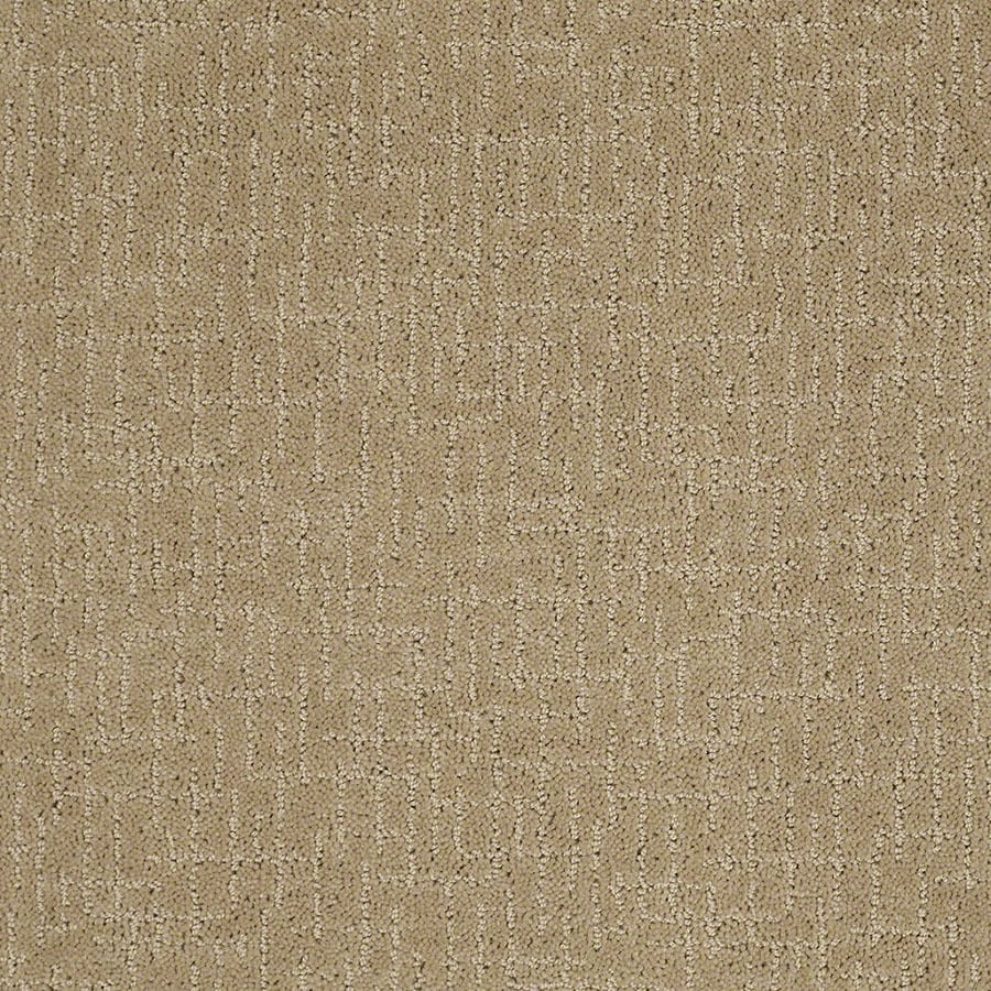 STAINMASTER Undeniable Active Family Marzipan Cut and Loop Carpet Sample