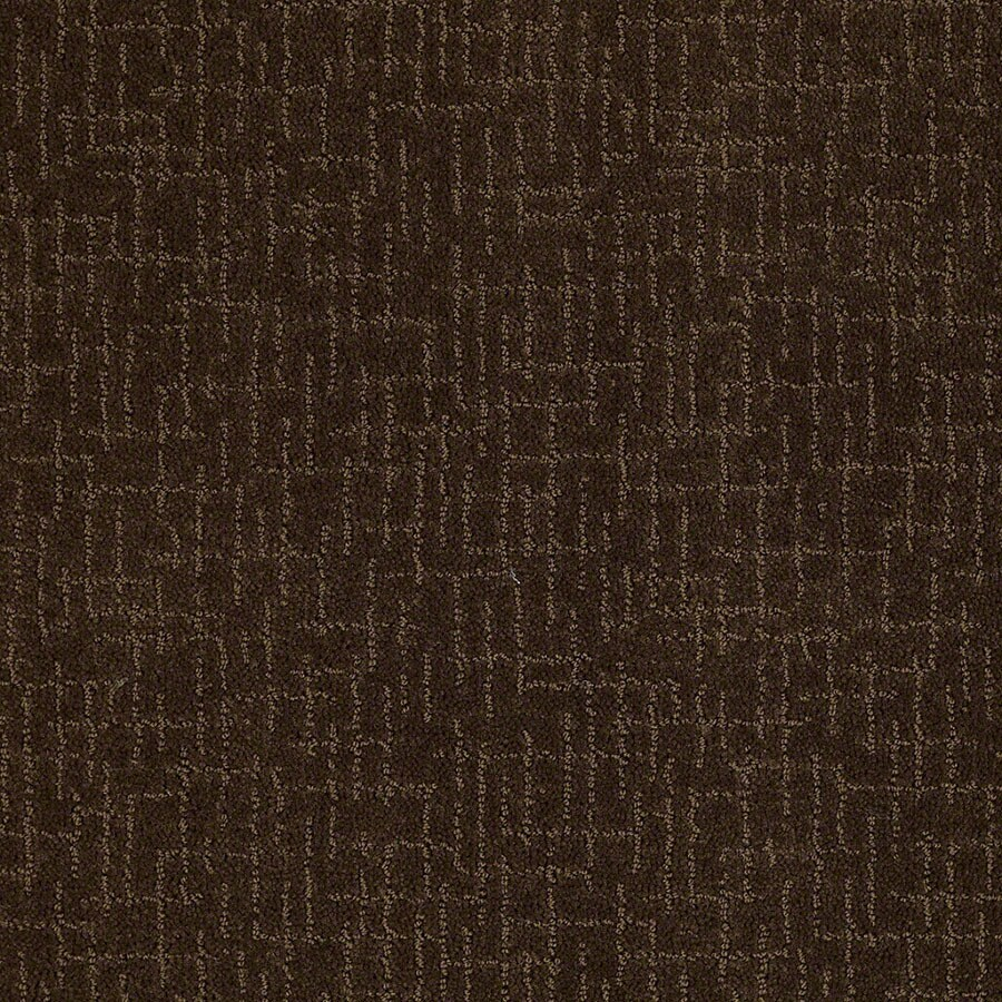 STAINMASTER Undeniable Active Family Cub Cut and Loop Carpet Sample